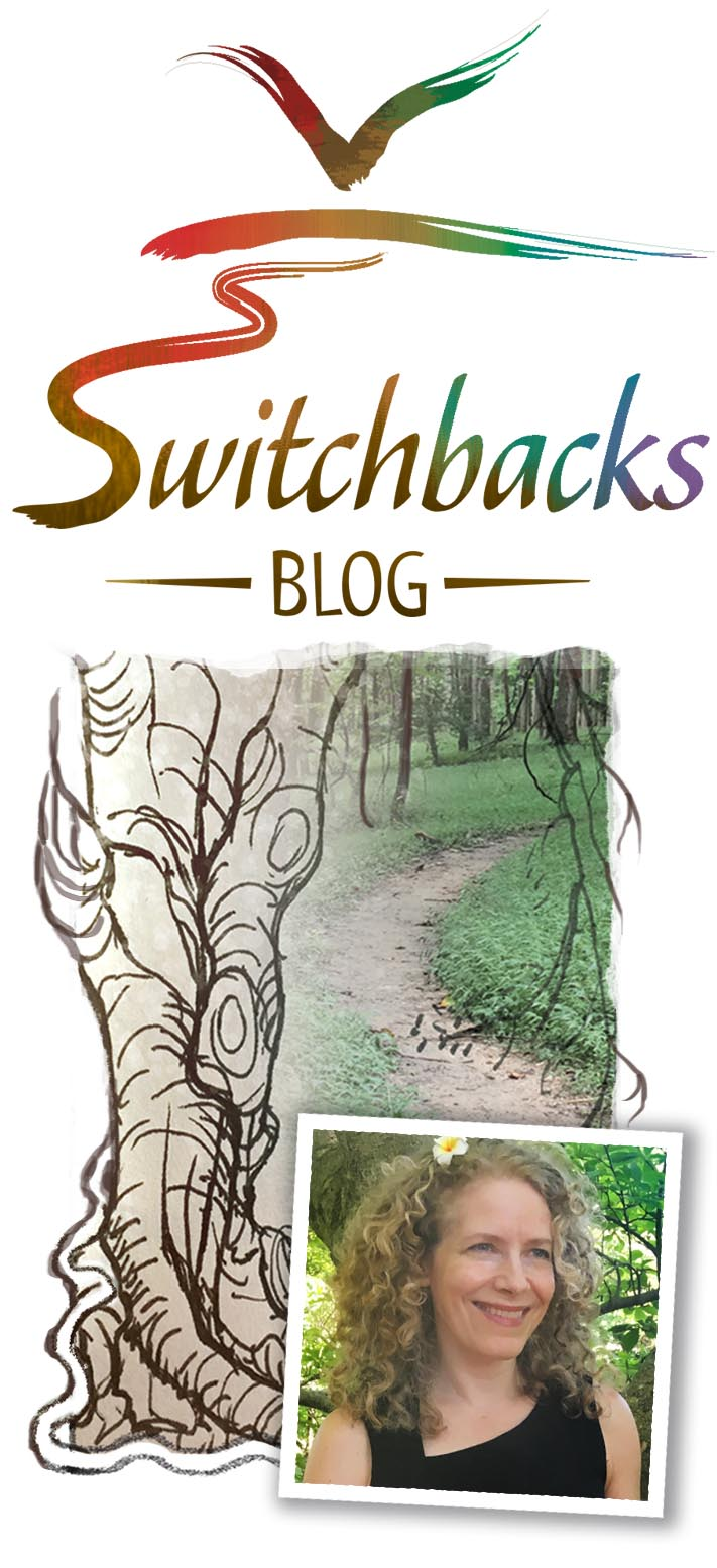 Karen Viola Switchbacks Blog