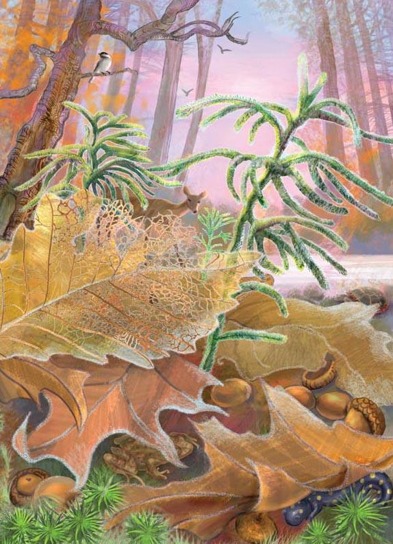 Card Art by Karen Viola