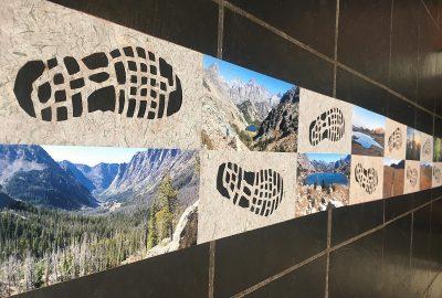 Trail Legs 2020